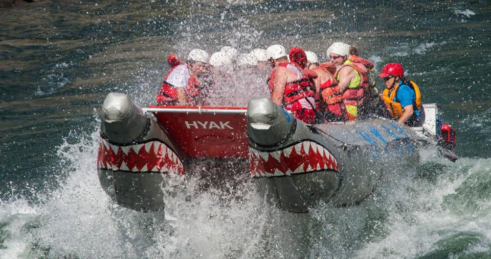 hyak_shark_raft_02
